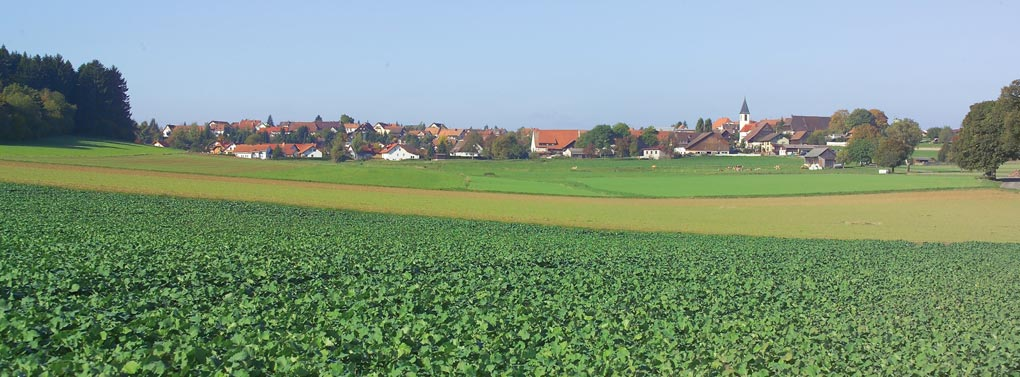Dittishausen fields & village